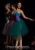 Ballett Allgemein_1
