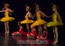 Ballett Allgemein_4