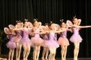 Ballett Allgemein_7
