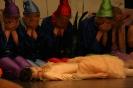 Ballett Allgemein_9
