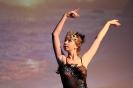 Ballett Gala 2015_20