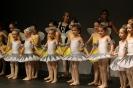 Ballett Gala 2015_136