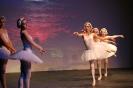 Ballett Gala 2015_29