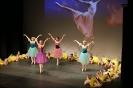 Ballett Gala 2015_34