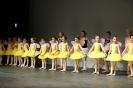 Ballett Gala 2015_135