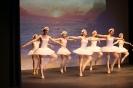 Ballett Gala 2015_28