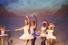 Ballett Gala 2015_10