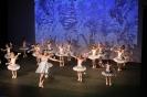Ballett Gala 2015_53