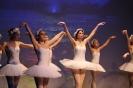 Ballett Gala 2015_33