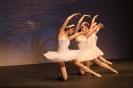 Ballett Gala 2015_24