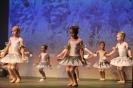 Ballett Gala 2015_51