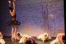 Ballett Gala 2015_6