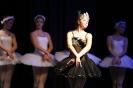 Ballett Gala 2015_31