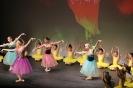 Ballett Gala 2015_38