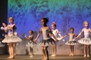 Ballett Gala 2015_52