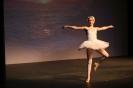 Ballett Gala 2015_27