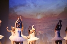 Ballett Gala 2015_15