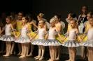 Ballett Gala 2015_138