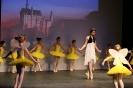 Ballett Gala 2015_62