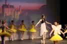 Ballett Gala 2015_60