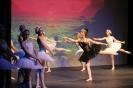 Ballett Gala 2015_30