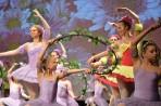 Ballett Gala 2017_8