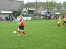 Mini WM 2010